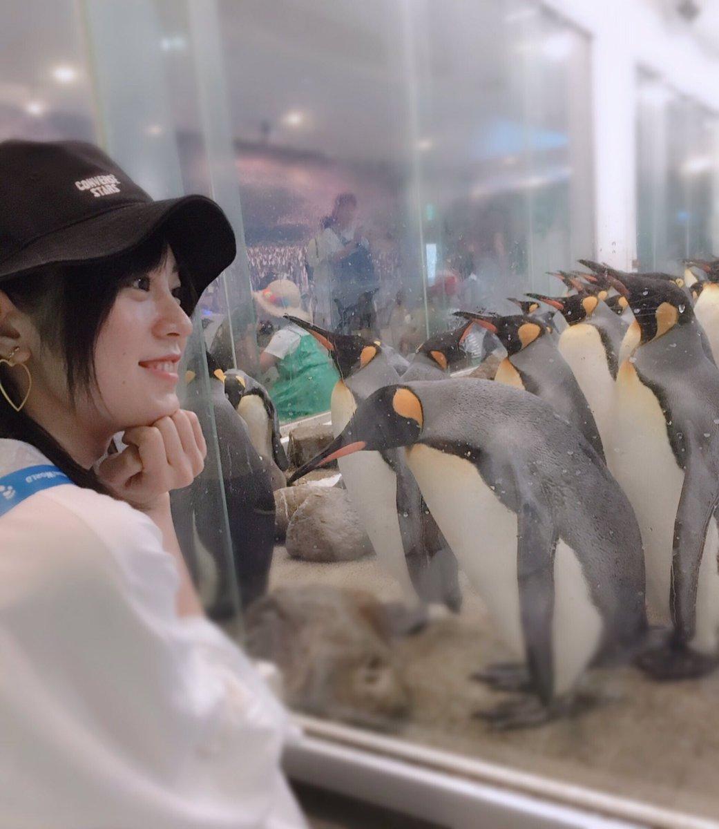ペンギンさんもいっぱいでした!🐧🐧🐧🐧🐧🐧💓写真スポットも!4枚目のドヤ顔!!!😎#アドベンチャーワールド#和歌山#南紀白浜