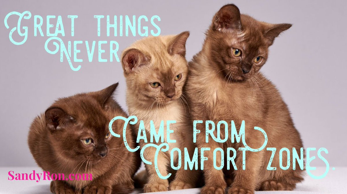 As nice as those comfort zones are, sometimes it's necessary to break out!   #SuccessTips #AttractionMarketing<br>http://pic.twitter.com/A3JPnDbmrZ