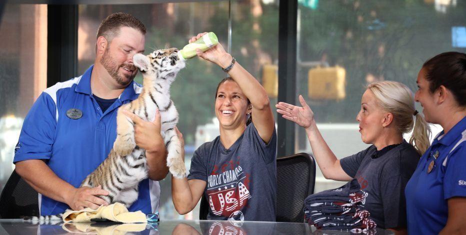 RT @ftbllrswanimals: Carli Lloyd feeding Carli the tiger https://t.co/otOvFkwCYx