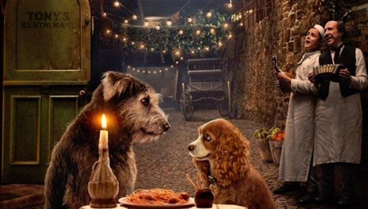 Fall in love all over again and watch the first trailer for the Disney+ movie Lady and the Tramp.  http:// bit.ly/2KRaCzY     <br>http://pic.twitter.com/nFXmmbrtvo