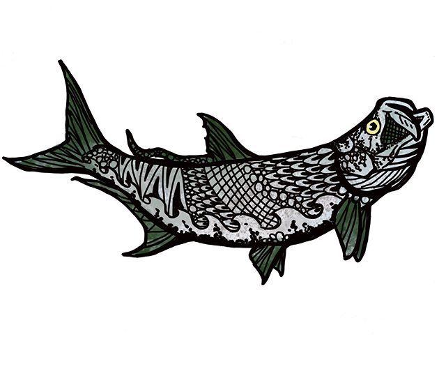 fishart hashtag on Twitter