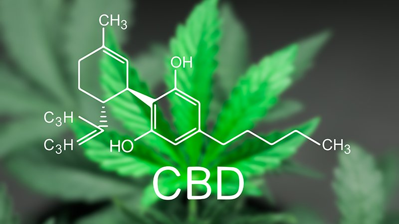 In the UK, #epilepsy and #MS patients decry lack of access to #CBD products. NHS says there's little supporting evidence of efficacy. https://t.co/FAXr13qKZb https://t.co/D1p4XVyaiT