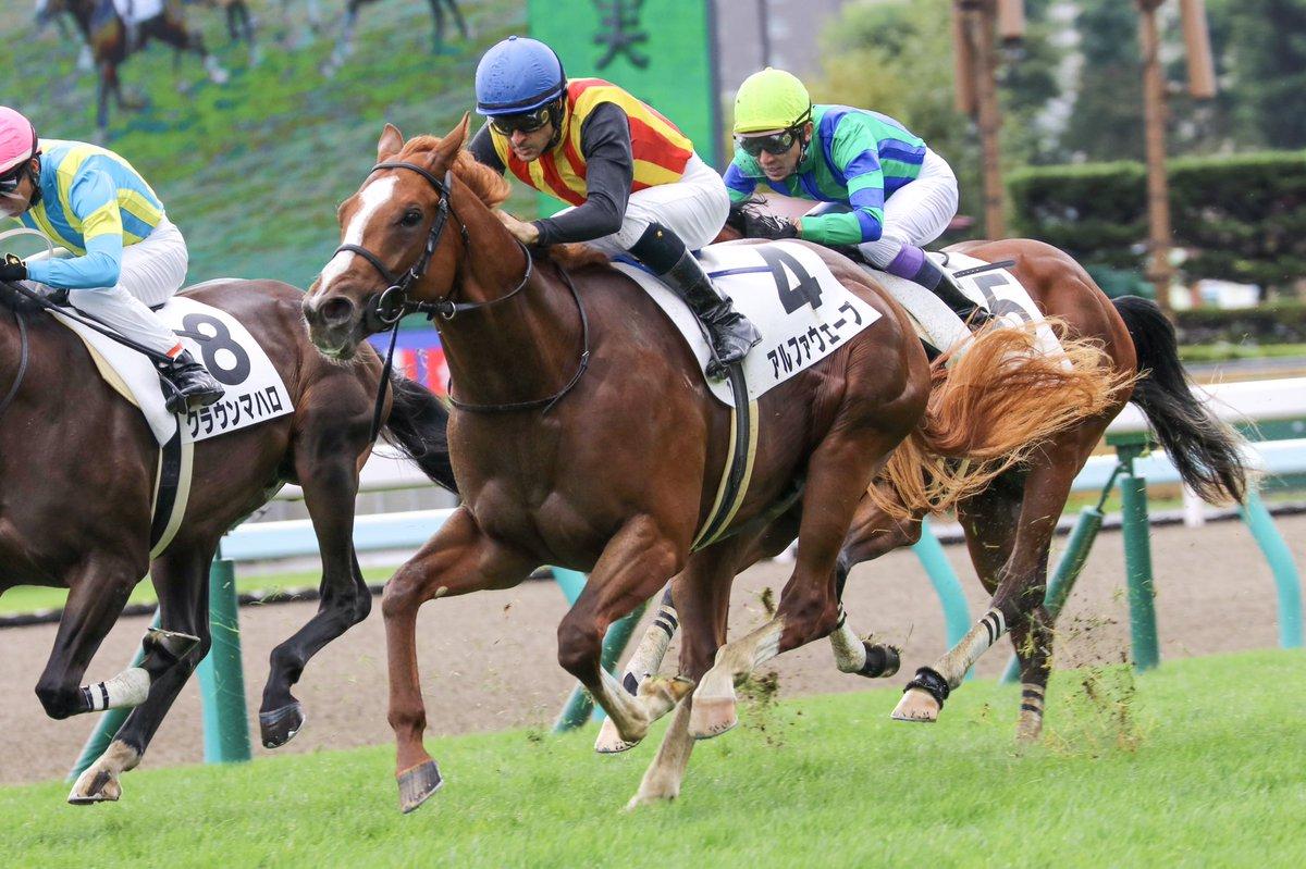札幌1r アルファウェーブ勝利おめでとうございます🎉  #クリストフ・ルメール #アルファウェーブ