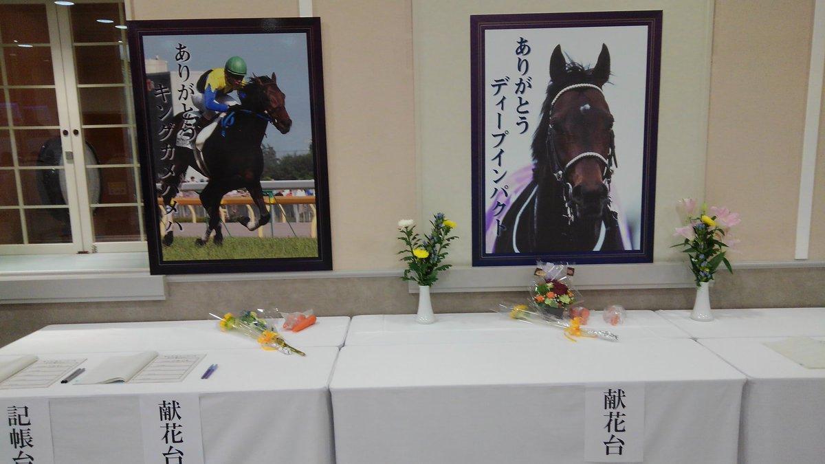 文化祭を抜け出して 福島競馬場へ  馬券も少々買いますけど 本日の主たる目的は名馬への献花  ディープインパクト キングカメハメハ  まさか 二頭同時に行うことになるとは 合掌