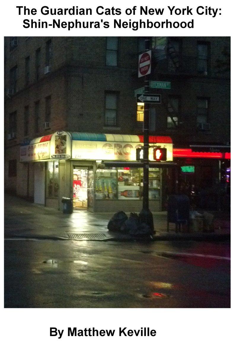 The Guardian Cats of New York City: Shin-Nephura's Neighborhood https://t.co/DbwBiGVnhh https://t.co/obhY7PxWXD