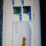 Image for the Tweet beginning: 3d-programmeren met #BlocksCat bij #ScratchEurope