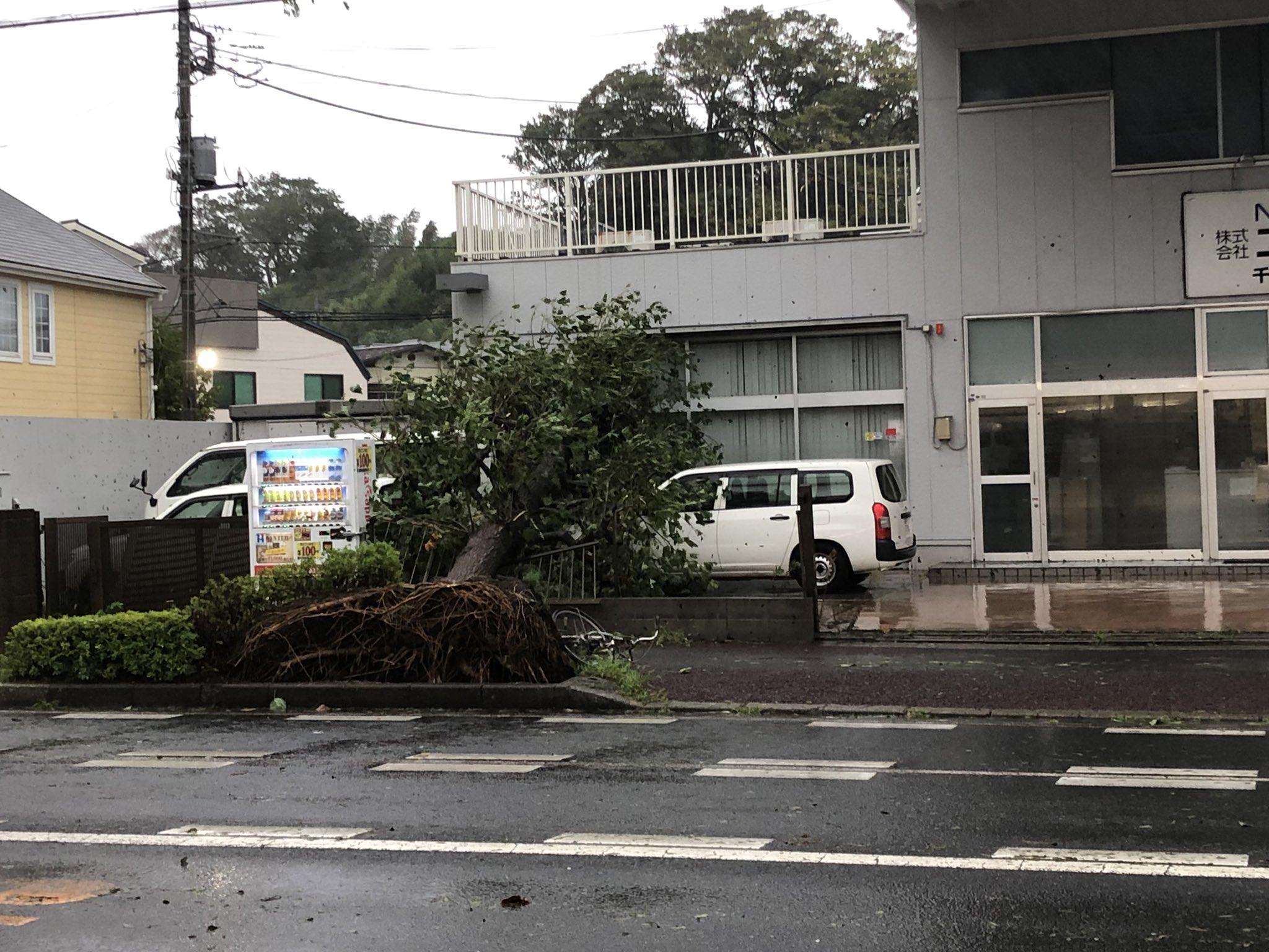 画像,街路樹が強風でなぎ倒されて建物に#台風15号#千葉県#千葉市#街路樹 https://t.co/B98dXX9nrT…