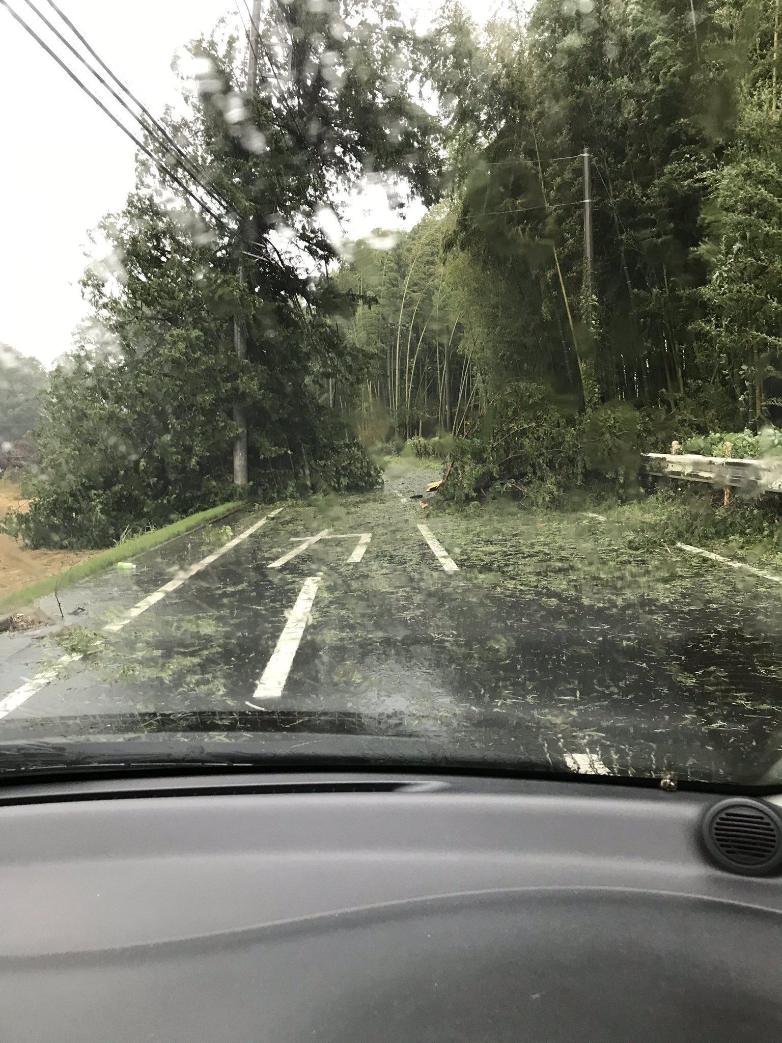 画像,おはよーございます‼️台風直撃の現場、倒木で電線が切れ停電してます!皆さんもお気をつけて❣️ https://t.co/Q01Z3R9vv5…
