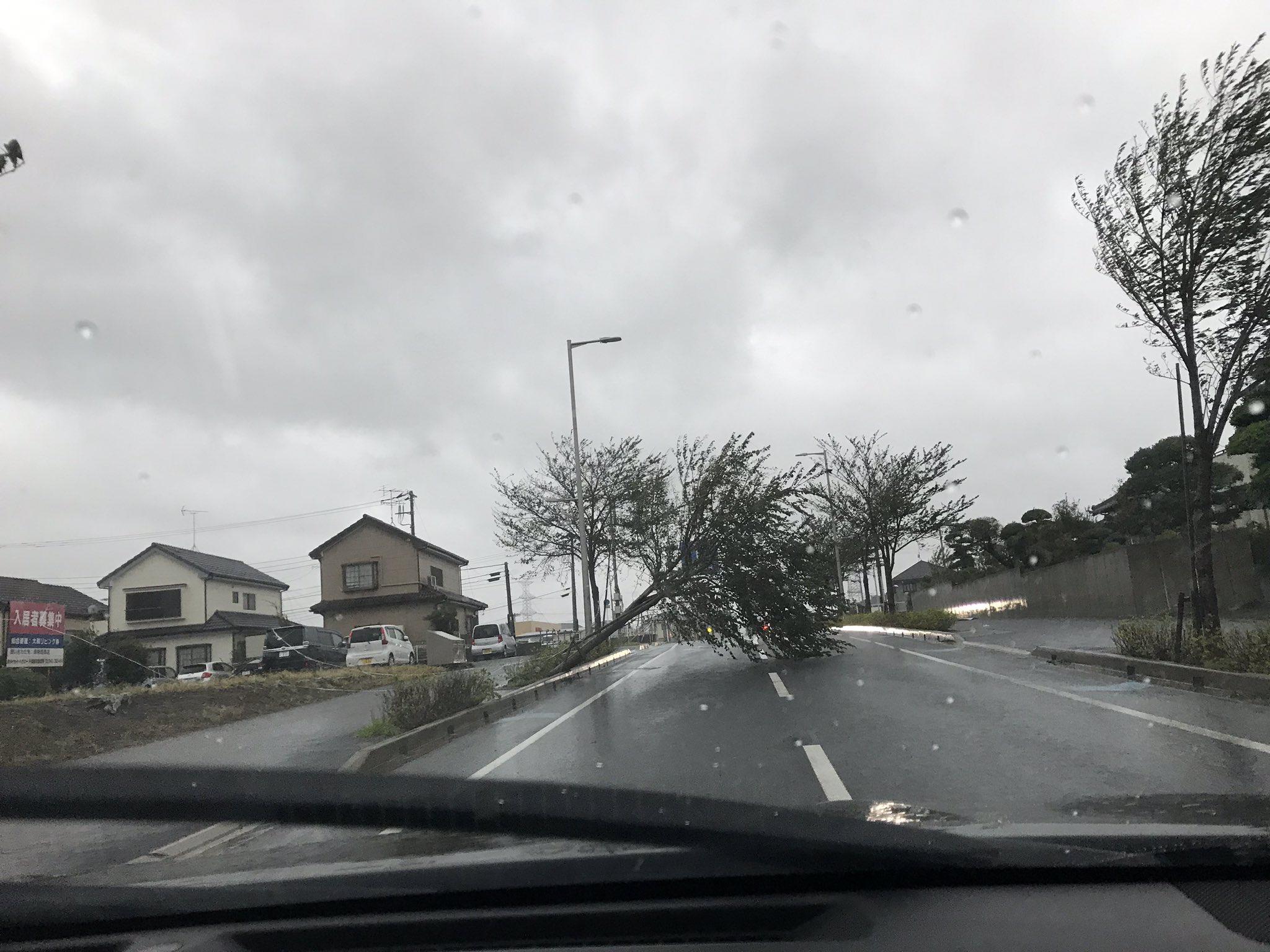 画像,@ZIP_TV 千葉市緑区外房有料道路は倒木で通行止め。高田インター前も、電柱と倒木により通行止めです。 https://t.co/CQiOt0eKci…