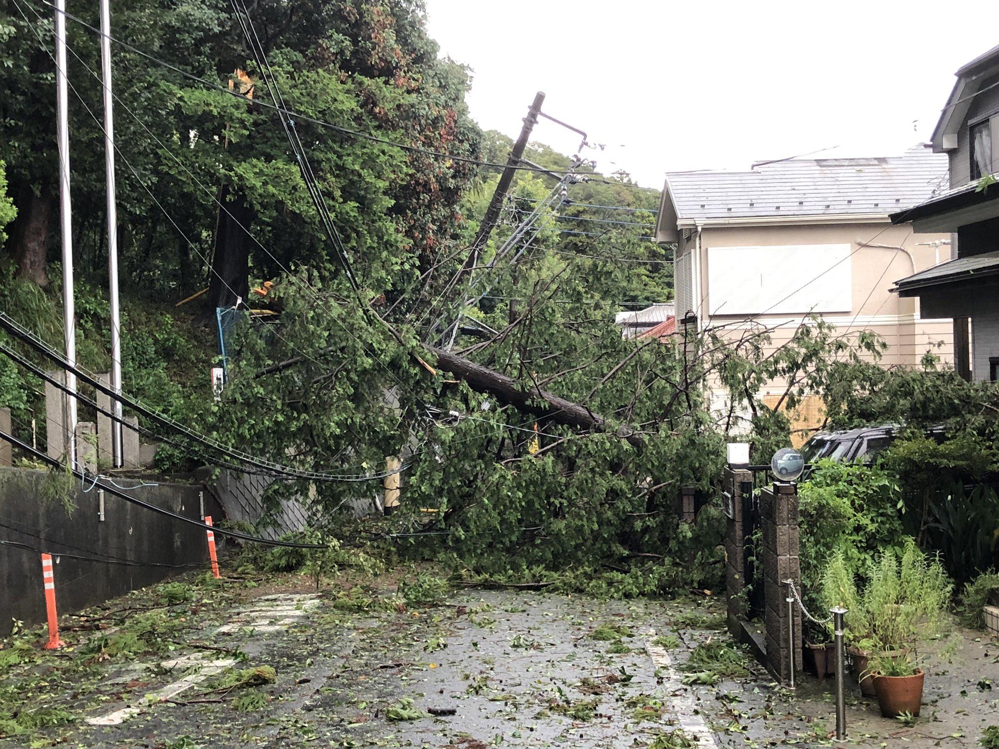 画像,台風の影響で倒木と電柱なぎ倒しで通行止め。 https://t.co/paY1TDAZzJ。