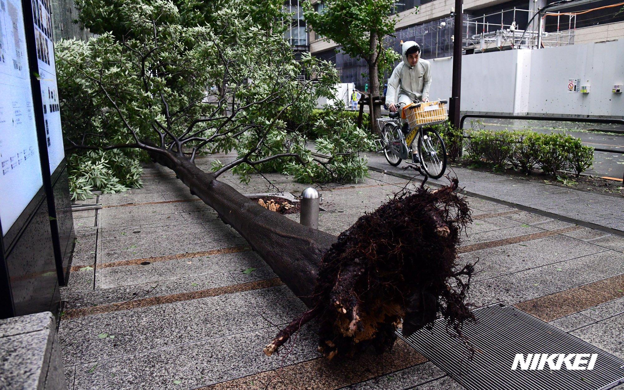 画像,午前5時ごろ千葉市付近に上陸した台風15号の影響で、9日未明に千葉市で最大瞬間風速57.5メートルと観測史上1位の強風を観測しました。東京・大手町のビジネス街で…
