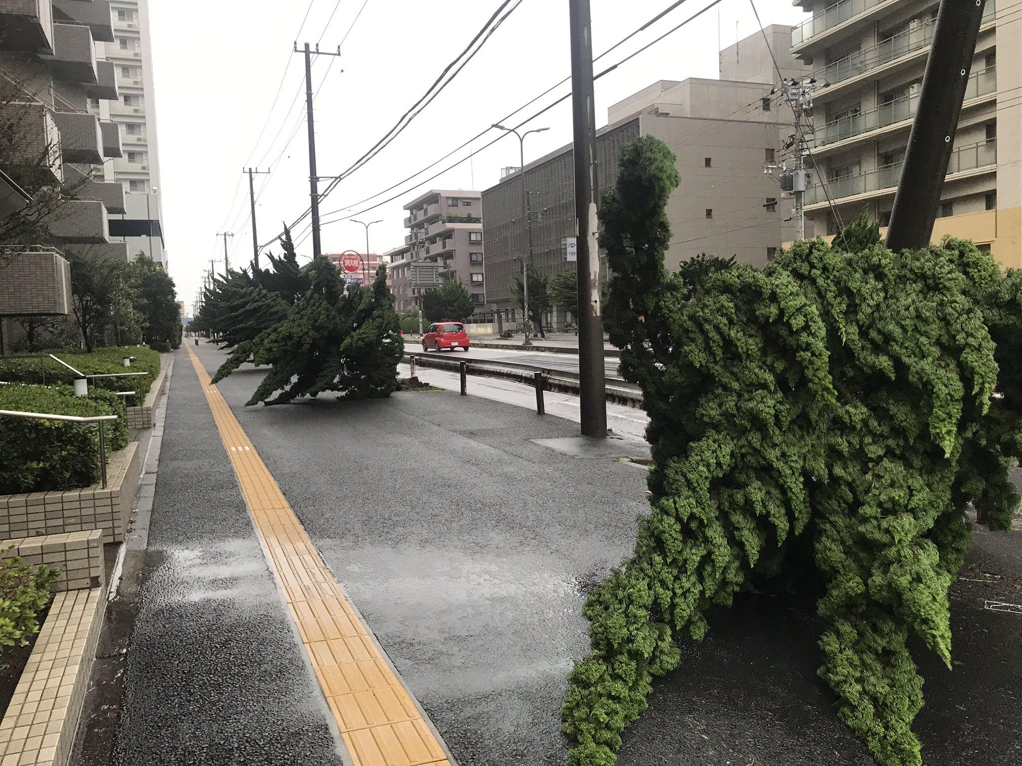 画像,台風被害情報 千葉市 https://t.co/wU1vY0tjxv。