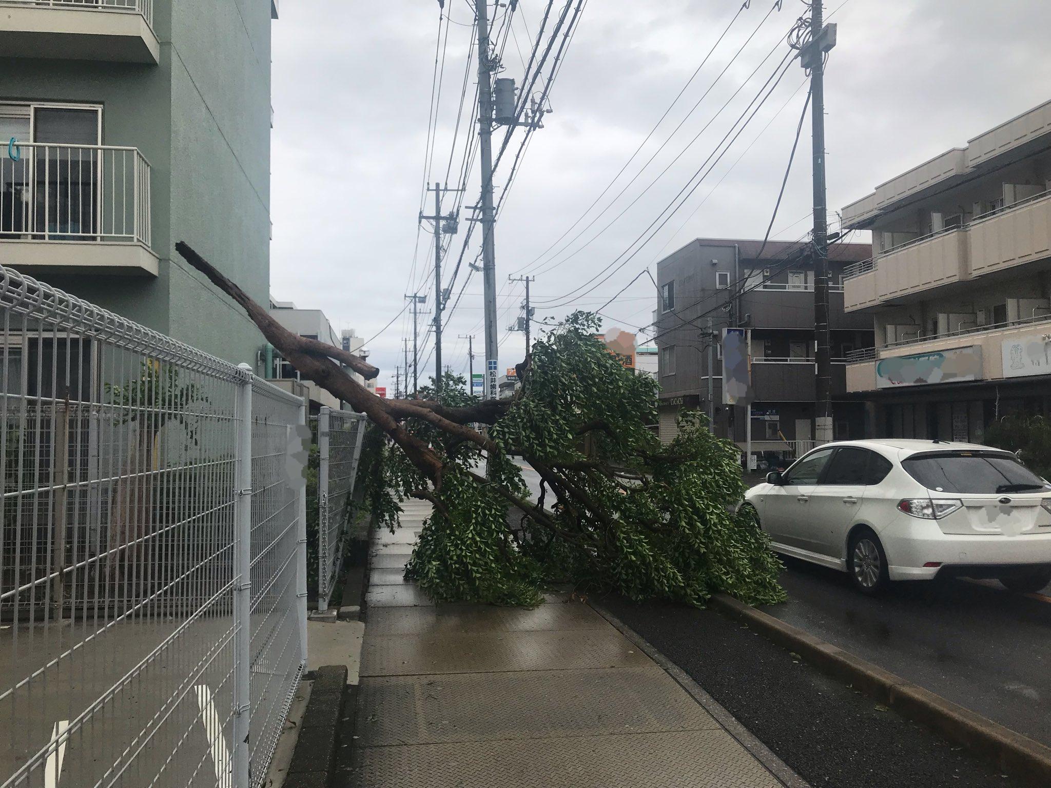 画像,個人的には台風の被害はありませんでしたが、通勤途中にもいろんなものが風で飛ばされてたり倒木があったりしてましたね。まだまだ横風も強いのでみんな気をつけてね。 h…