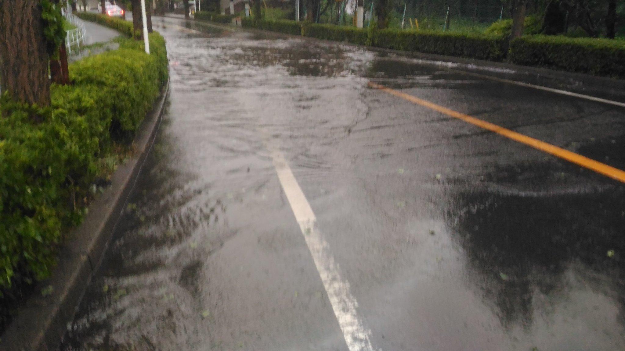 画像,千葉県八千代市でも台風15号の被害が出ていて、倒木や冠水が発生している。 https://t.co/fohZzXjuMM。