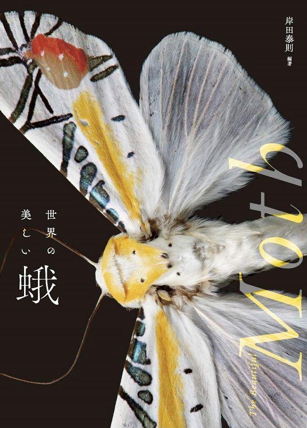 世界中の美しい蛾を一堂に集めた、初めての「蛾の写真集」。幾何学模様のような斑紋や、ビビッドな色合いを持った美しい蛾が110種掲載。翅や胴体、毛の様子もよくわかり、蛾の魅力をあますことなく伝える一冊。岸田泰則さん『世界の美しい蛾』が本日発売です。▼