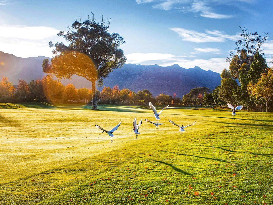 The early bird catches the worm. ⛳️Wishing all our golfers this weekend a great round on our Jack Nicklaus Signature golf course.#PlayThePearl
