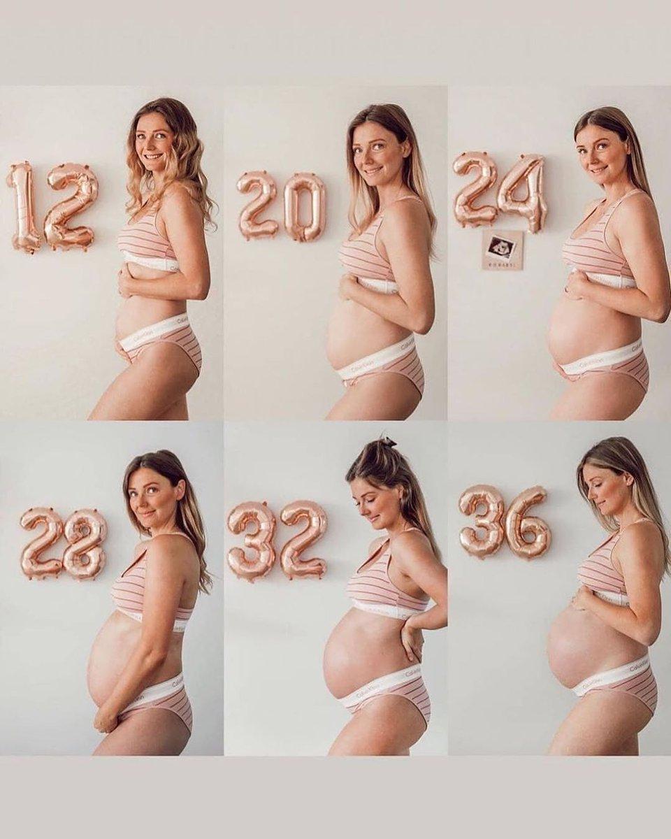 Живот беременной по месяцам в картинках
