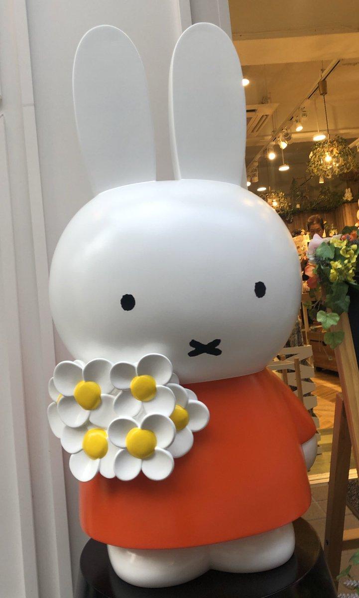 """ミッフィー 浅草 フラワー カラフルな""""お花のドリンク""""も!「フラワーミッフィー juice"""