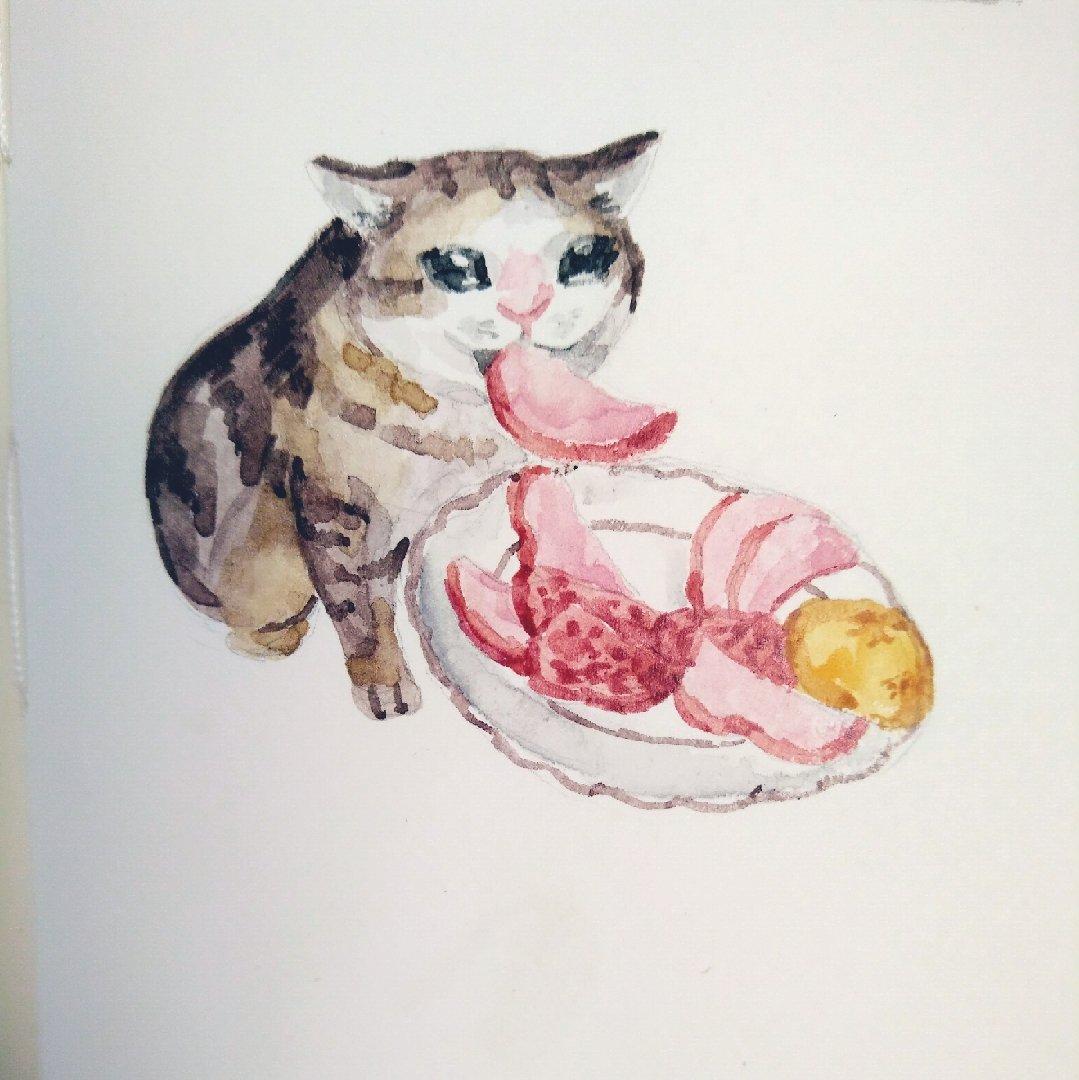 Download Crying Cat Meme Drawing   PNG & GIF BASE