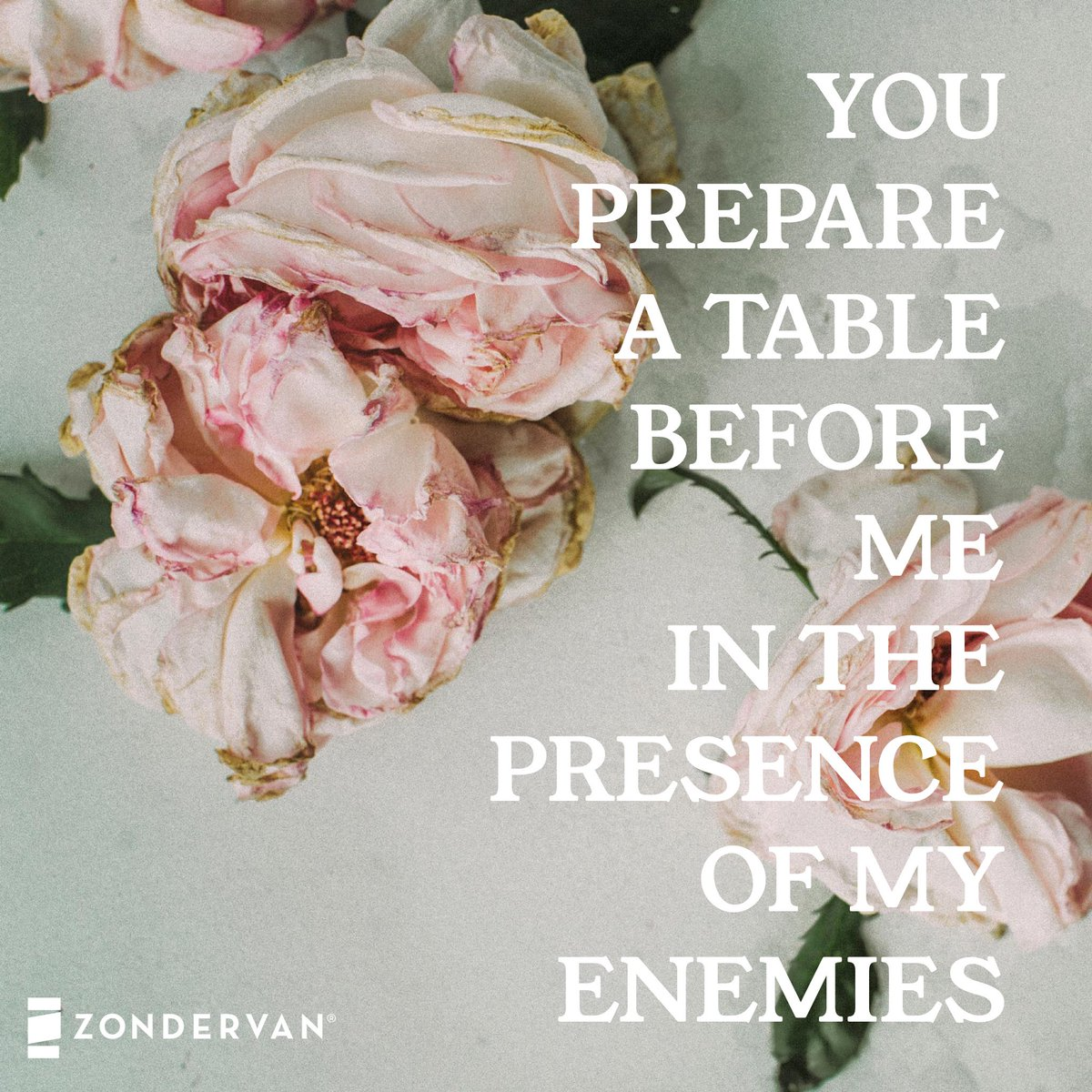 You Prepare A Table Before Me In The Presence Of My Enemies