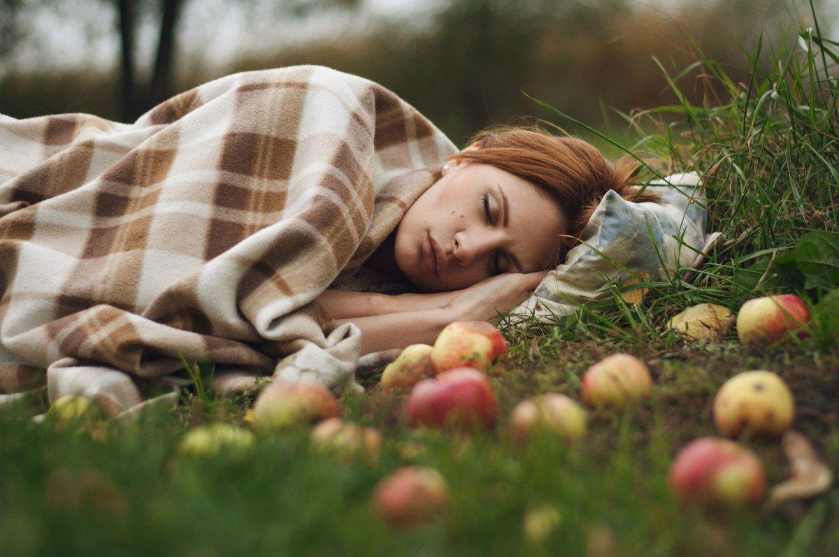 фотографировать во сне природу к чему все материалы