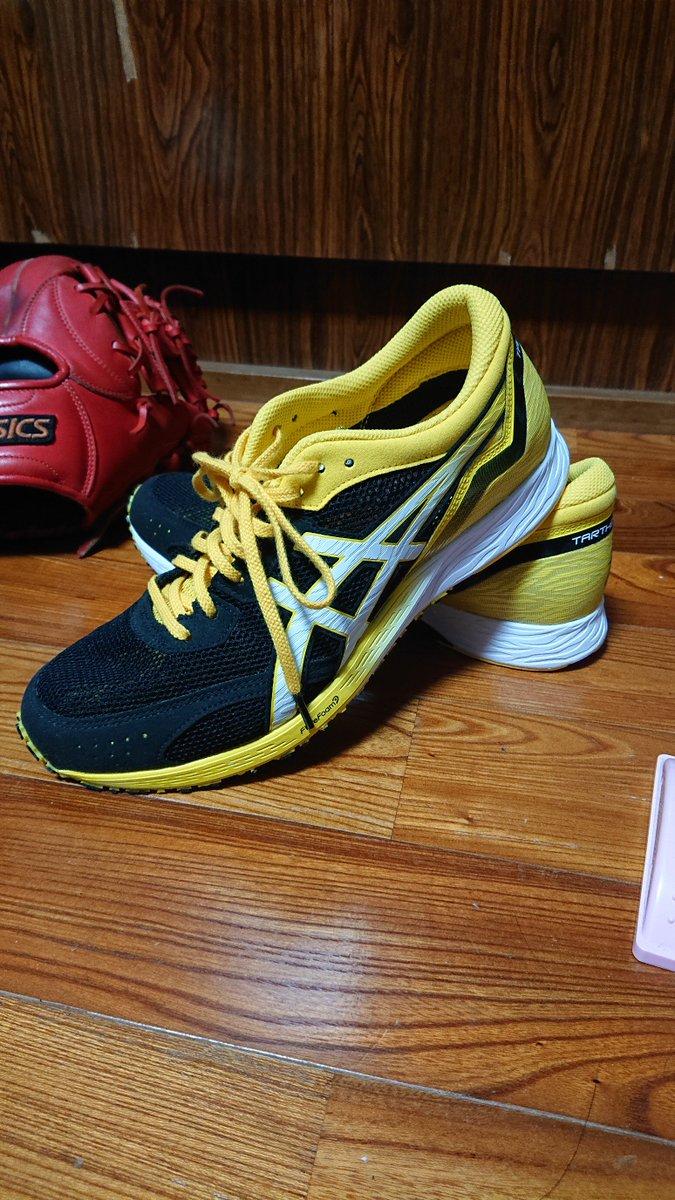 今シーズンを一蓮托生する、シューズを選んできた。 この靴とまだ見たことない世界を見てきます。  #熊本城マラソン  #青島太平洋マラソン #ターサーエッジ #虎走