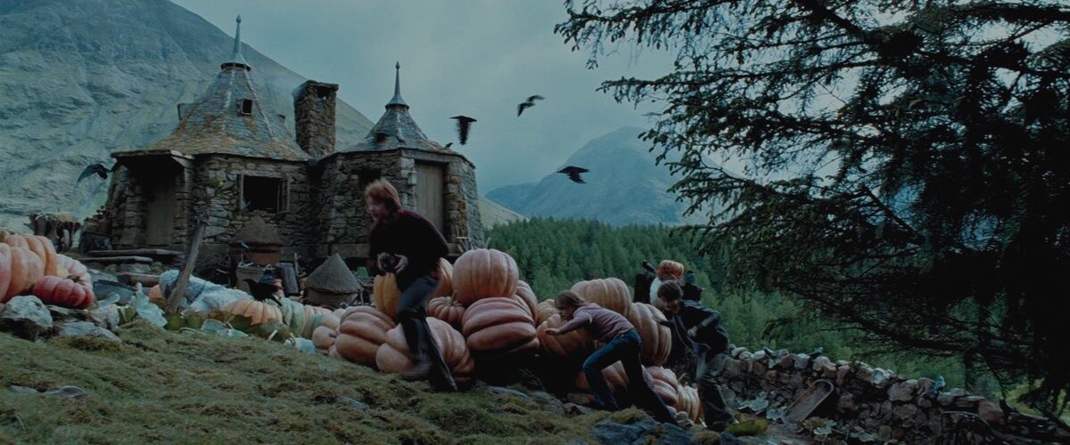 prisoner of azkaban is a movie that was invented for autumn.