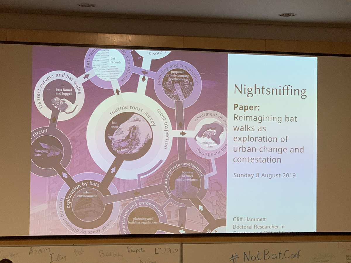 The best talk title yet at a bat conf?! Night sniffing!! #NatBatConf