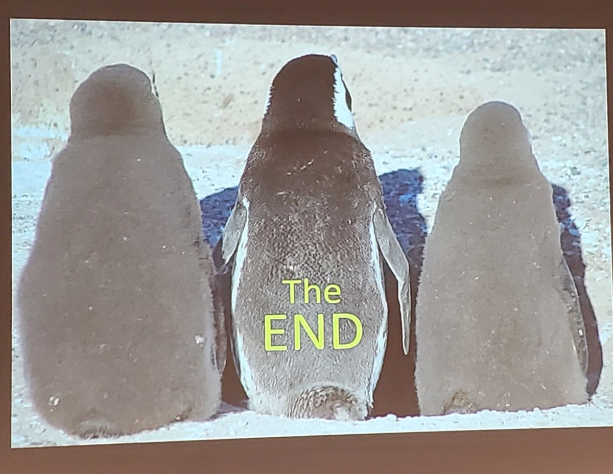 The 10th International Penguin Conference comes to an end, waddle you take forward to protect the penguins between now and #IPC11 in Viña del Mar in Chile in 2022? #IPC10 (Photo by Ginger Rebstock) <br>http://pic.twitter.com/fjll7bO82q