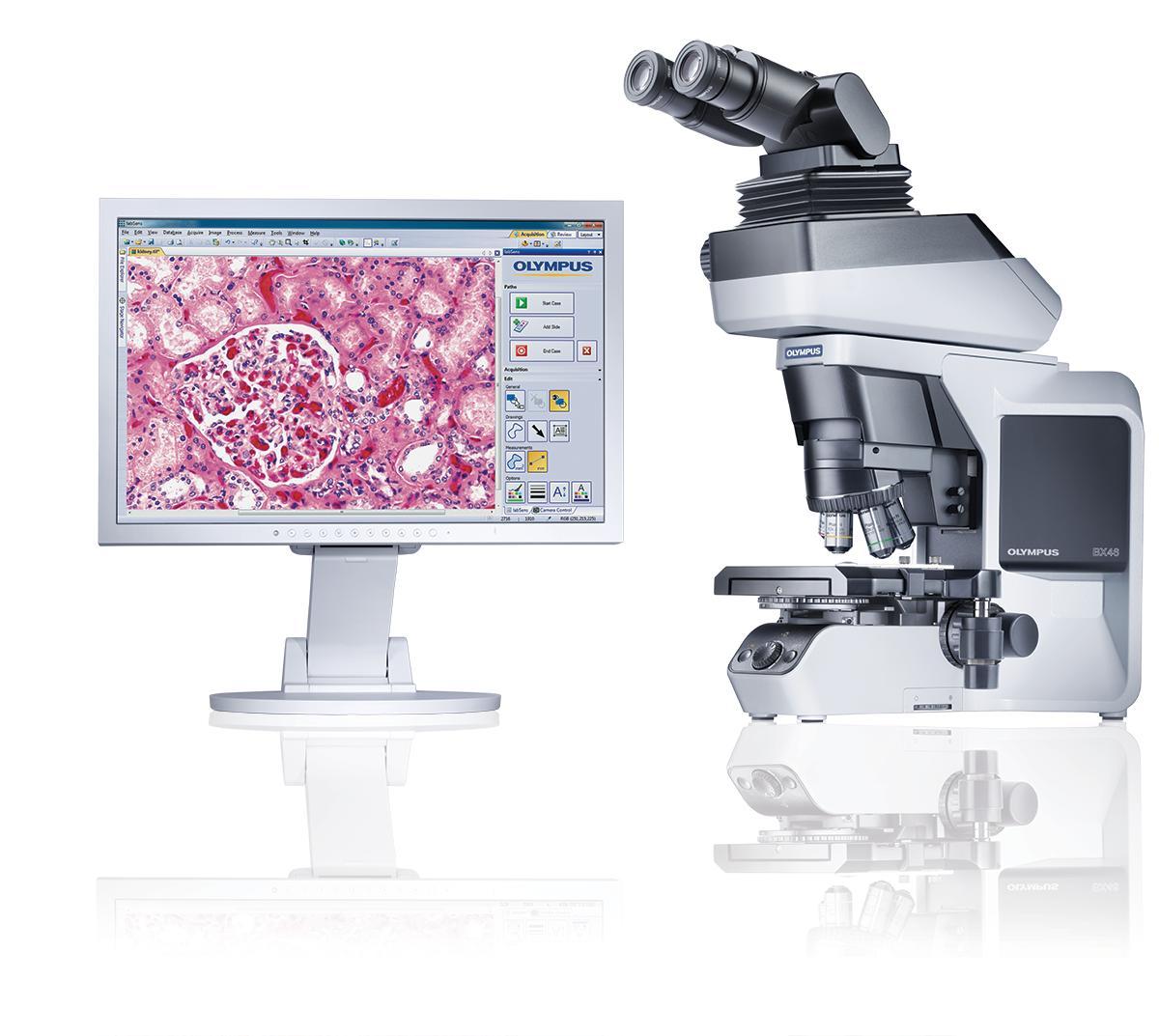 Olympus bx46 – лучший микроскоп для новых открытий