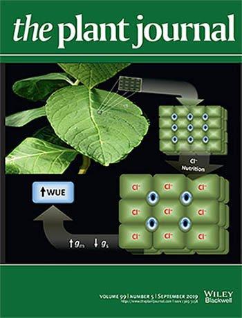 The Plant Journal (@ThePlantJournal)   Twitter