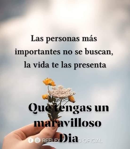 LAS PERSONAS MS IMPORTANTES - MI MUNDO SOADO - Gabitos