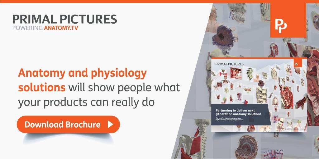 view Handbuch Robotik: Programmieren und Einsatz intelligenter