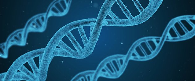 test Twitter Media - Have you heard that certain gene mutations raise the risk of #cancer? We break down a few common ones linked to #breastcancer.  https://t.co/ncNUXR2iRM https://t.co/oAqsO94O4J