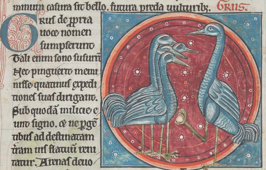 Replying to @AinonenT: @BLMedieval The crane