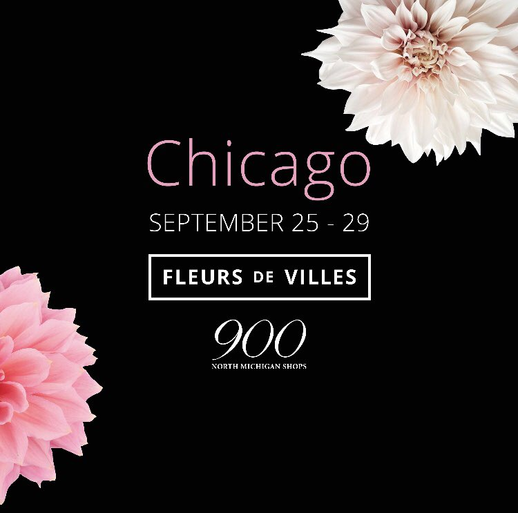 With a nod to our American friends who have asked us over the years when we are coming to the United States, we very proudly announce our first show at 900 North Michigan Shops on The Magnificent Mile in downtown Chicago. September 25 – 29. Please mark your calendars.