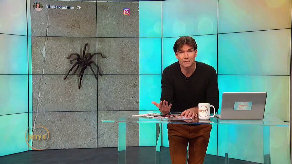 Kim Kardashian caught a huge spider in her garage, SCARY! This might be Jerry's fault! Watch now at http://www.JerryOShow.com.