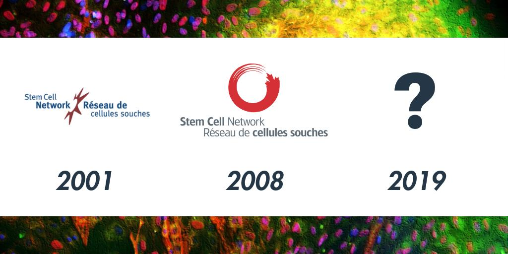 Stem Cell Network