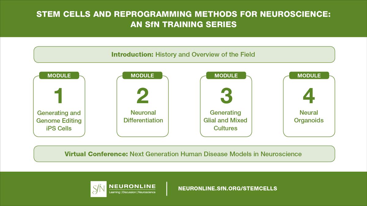 The Society for Neuroscience (SfN) в Twitter: