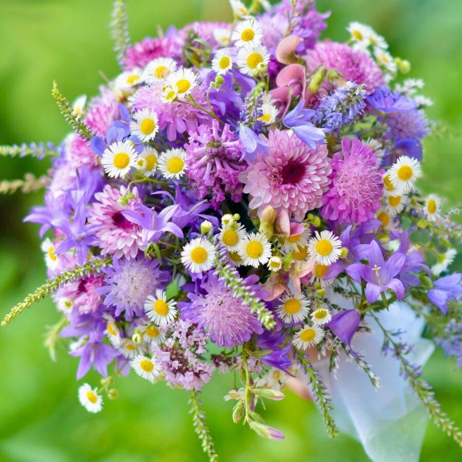 Цветов, открытки букеты полевые цветы