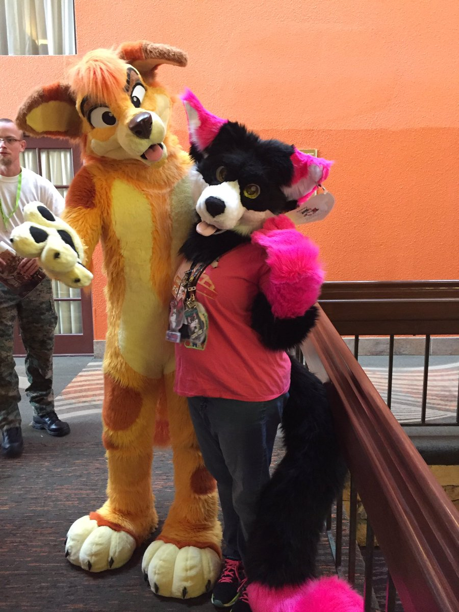 Happy #FursuitFriday here's a photo from @DenFurCO  #denfur #denfur2018 with me and @Sunny_Dingo  #fursuit #fursuiter #furry #furryfandom #furcon #furrycon #furryconvention <br>http://pic.twitter.com/1phVpc1KBO