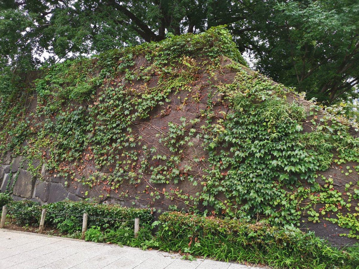 JR 四ツ谷駅麹町方面の出口真横にひっそり佇む。行き交う人も誰も見向きもしてない…ここが江戸城外堀、四谷見附跡なのだよ(写真参照) 江戸時代やったら、こうやって簡単に通る事なんかでけへんかったやろな…。ここ四谷見附を抜け麹町を経て江戸城、半蔵門へと続く。#四谷見附 #江戸城 #史跡 https://t.co/77gHhaKw3X