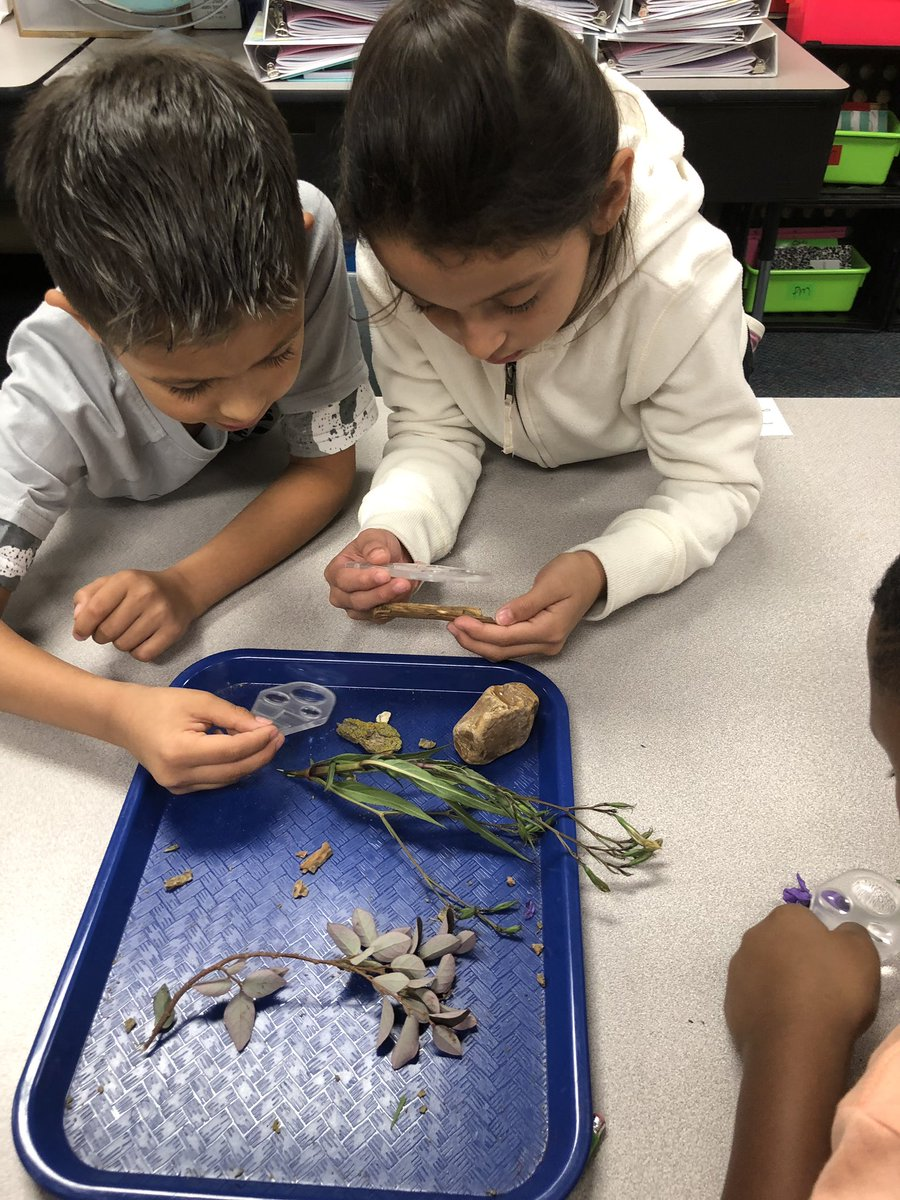 Our 3rd grade scientists @HemmenwayStreak couldn't wait for their first lab!! @CFISDScience