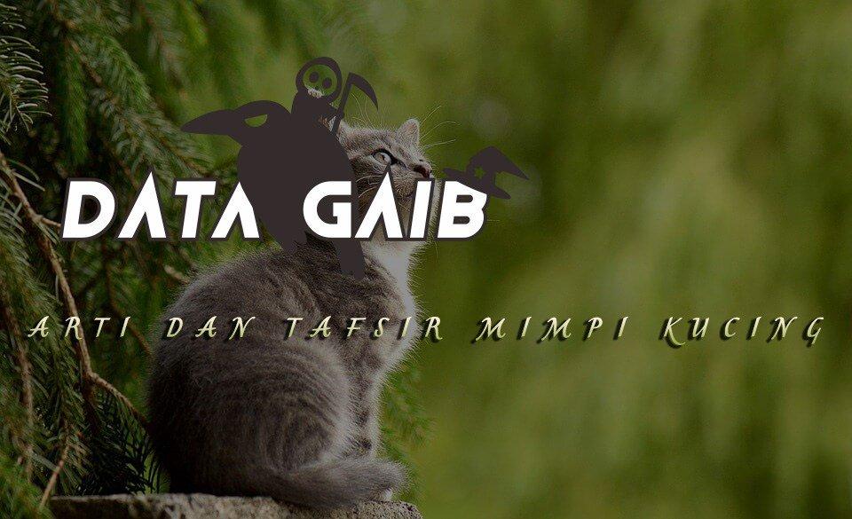 Download 92+  Gambar Kucing Togel Terbaik Gratis