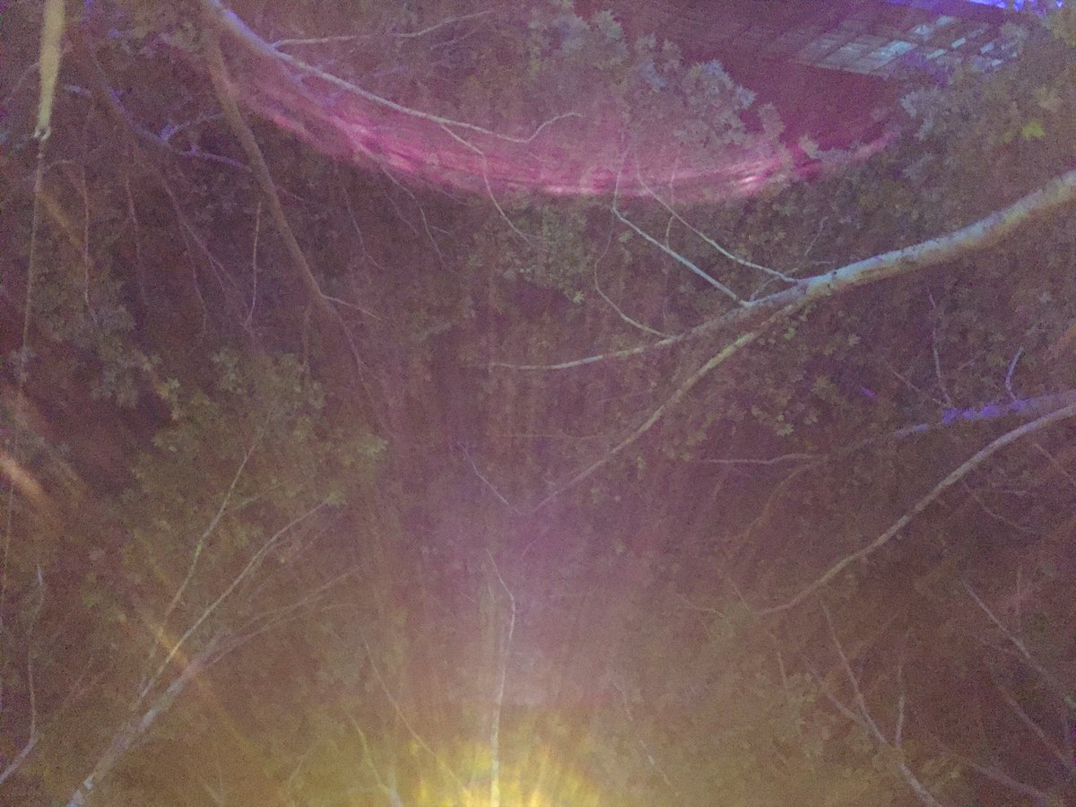 خداوندا نردبان #شب را می گذارم از پله های آسمان دلت بالا می آیم تا شبم بخیر شود در آسمان زیبای تُ...  @drahmadhellat pic.twitter.com/XN3efGnPHT