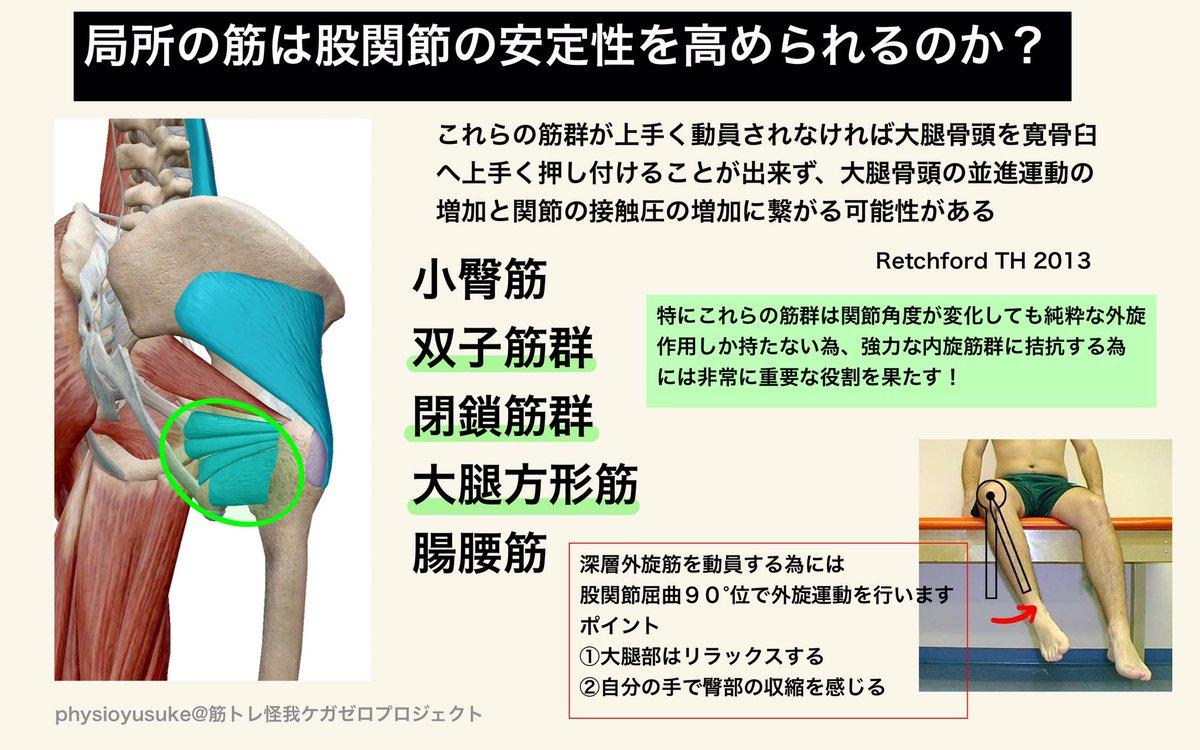 股関節 屈曲 筋肉