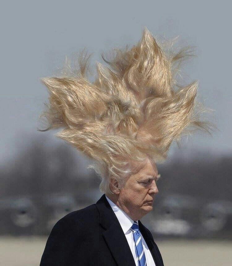 рамблер рассказывал, прикольные картинки волосы на ветру последней ролью стал