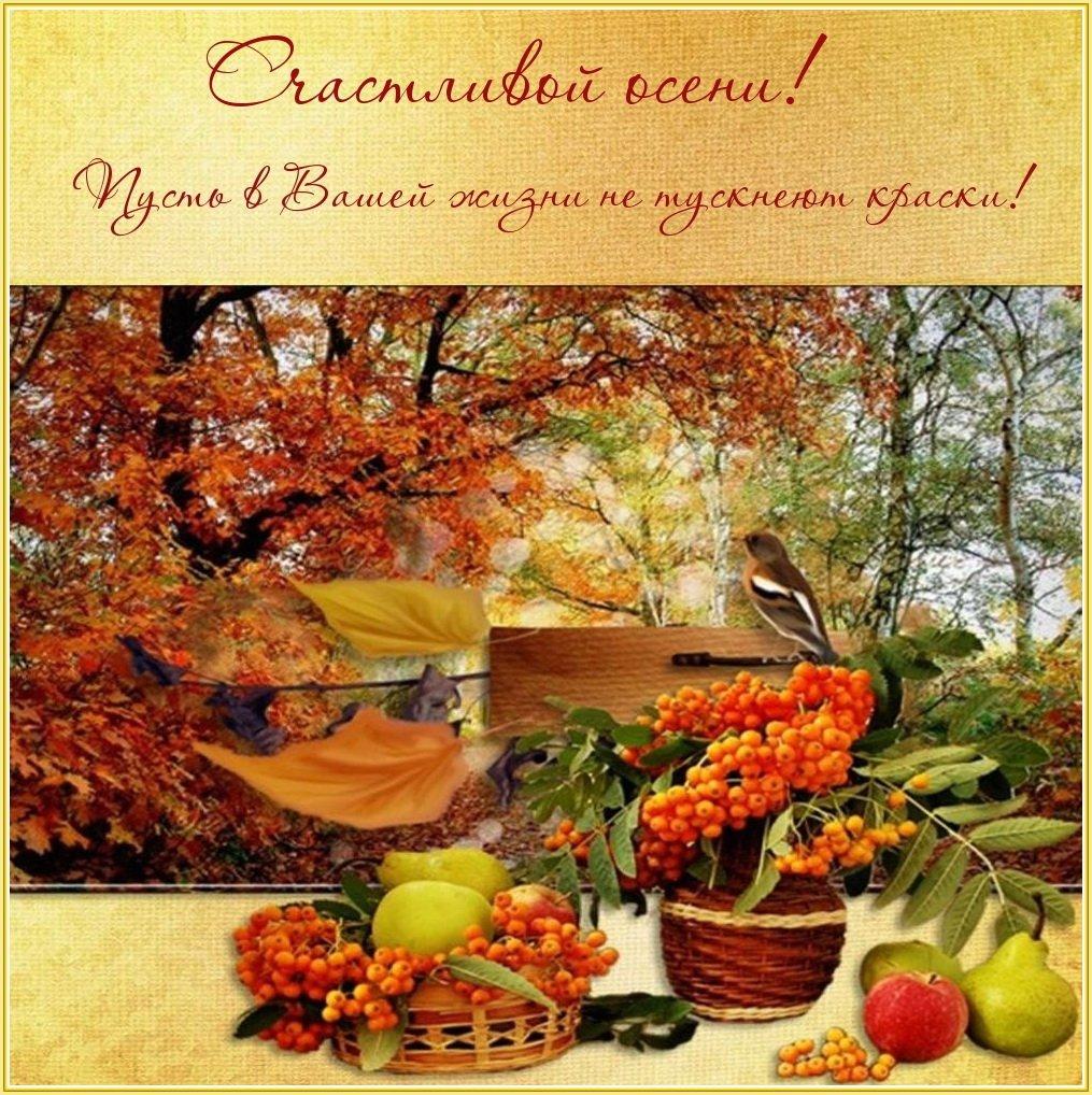 открытки деревенские доброго осеннего дня шотокан принято
