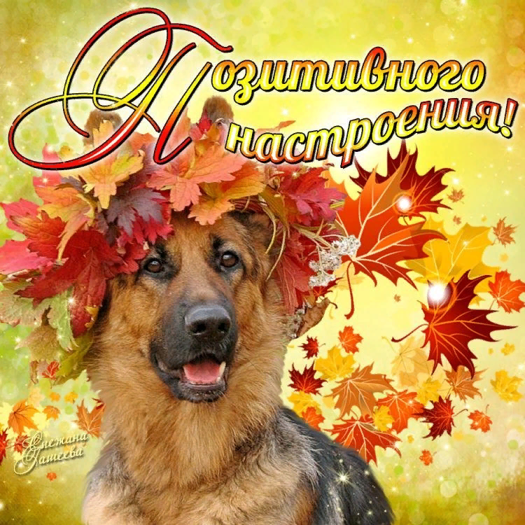 Осеннего позитива картинки с надписями