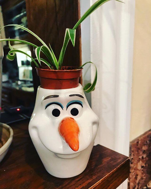 Olaf Flower Pot